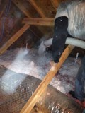 Add inches of insulation to your attic