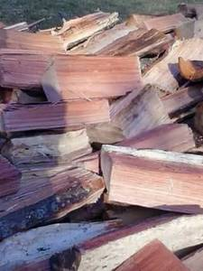 Firewood (Knoxville)