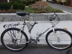 diamondback mountain bike (somerville)