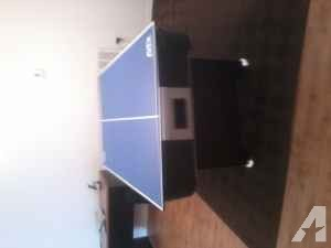 basketball hoop and air hockey table - $150 (dunnellon)