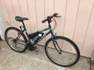 17.5 in. Cignal Ranger Girls 15spd. Mountain Bike (Elmhurst)