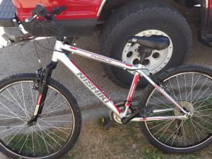Nishiki Pueblo Mens Mountain bike (Westville)