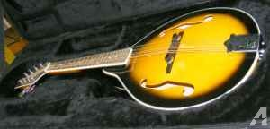 JOHNSON Mandolin WITH case - $85 (Nashville, TN)