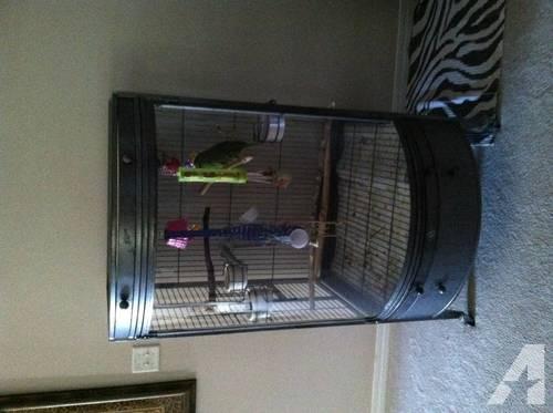 EZ Care Bowfront Parrot Cage