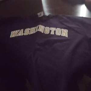 Washington Huskies sweatshirt. Large (mesa)