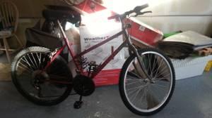 Mountain bike (N Lynnwood)