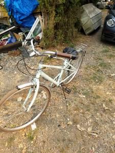 schwinn bike (graham)