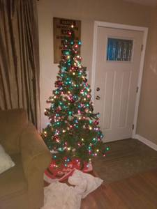 Free Christmas tree (Southside Indy)