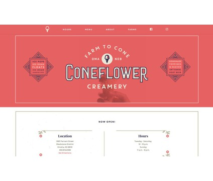 Cheap 100% Pure Custom Websites/Website