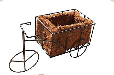 Bicycle shaped coconut basket/planter
