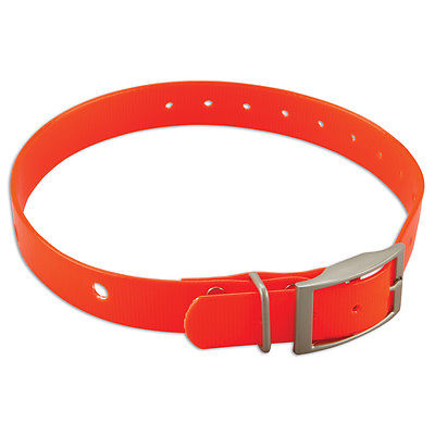 Garmin DC  40 Collar -010-11130-20