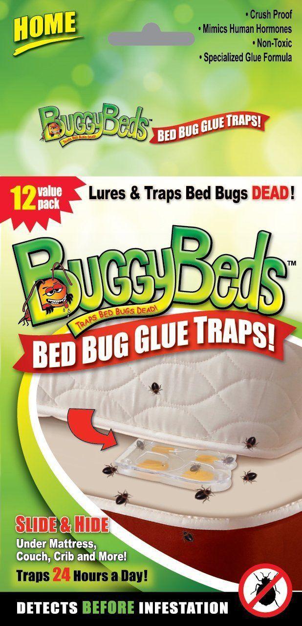 BuggyBeds  70790 12 Pack  Bed Bug Glue Trap Home Value