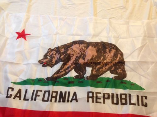California Large Flag Decoration Wall