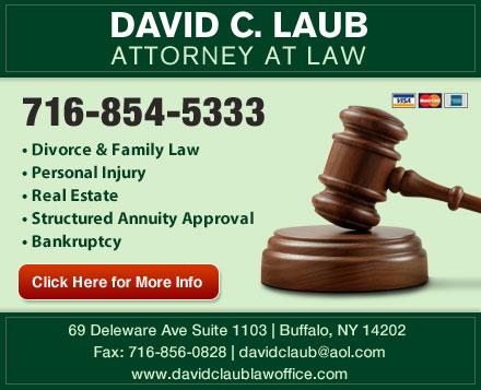 David C. Laub, Attorney At Law