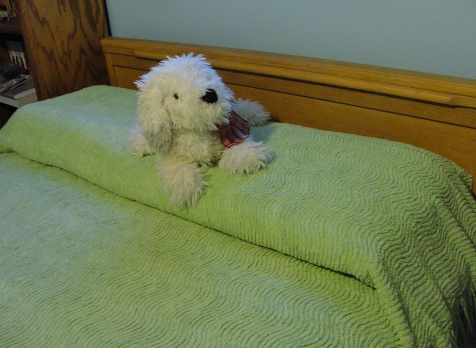 GREEN Cotton CHENILLE Vintage Bedspread Vtg TWIN Size Plush LIME Estate