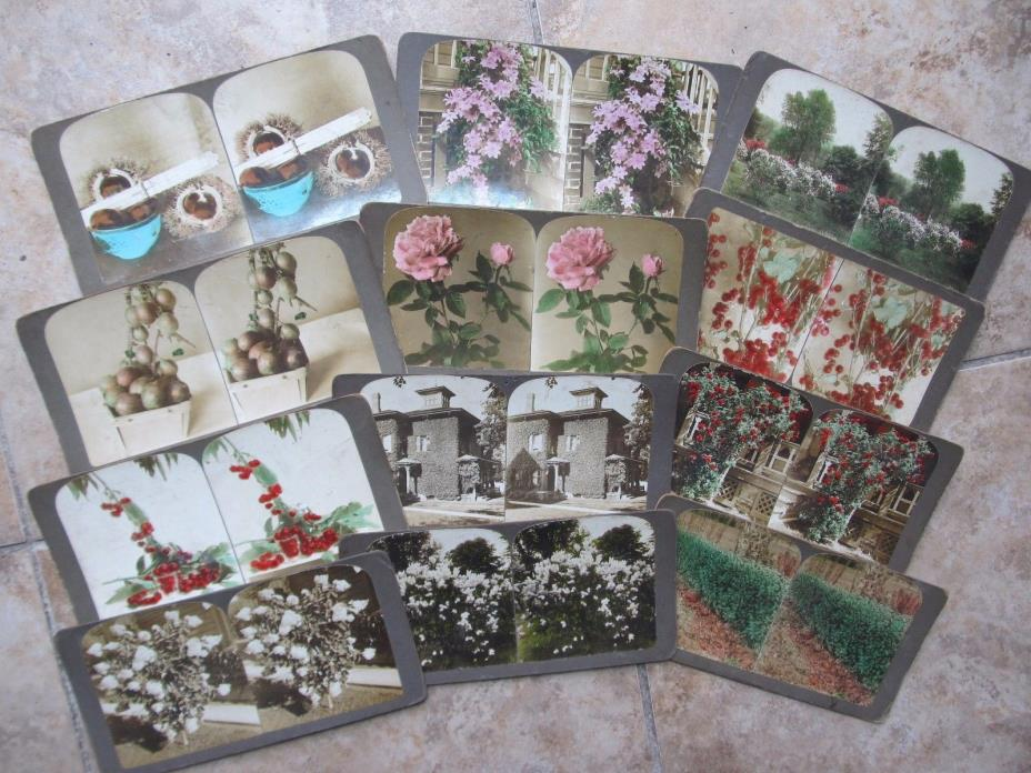 12 RARE Color Antique Stereo Photo Cards, Flower, Vegetable Ads, WM C. MOORE CO.
