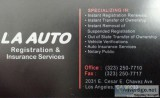 Auto Registration and Insurance Services