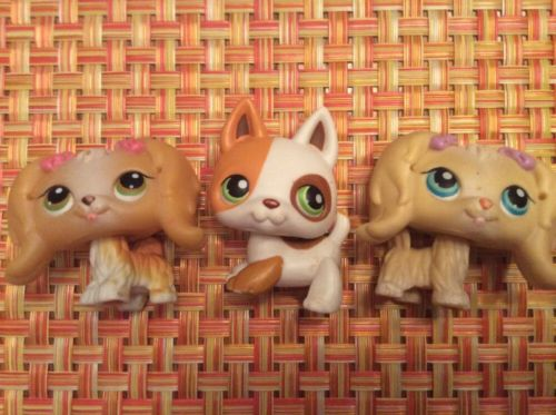 LITTLEST PET SHOP Lot Of 3 Dogs- 2 Maltese #175, #79 And German Shepherd #127