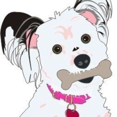 Pet Sitter & Dog Walker