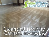 Best Carpet Cleaning Service in Tampa bay