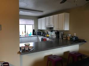 Private Bed & Bath - Looking for Professional Female $728 1bd