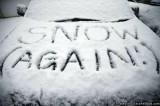 Residental Snow Removal Service
