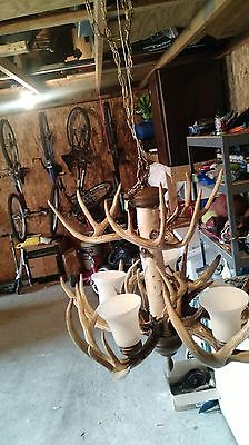 Whitetail Deer Antler Chandalier