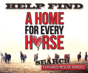 Equine Testing Ad