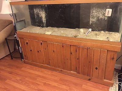 125 gallon saltwater tank