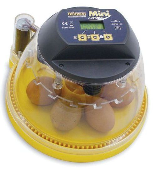 Incubator For Chicken Eggs Incubating Hatching Automatic Even Heat Turning Auto