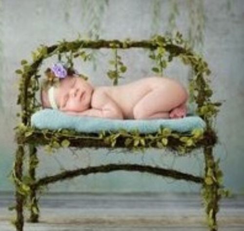 Newborn And Children Antique Iron Bench Wrapped In Beautiful Ivy Vine Photo Prop