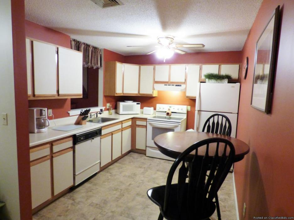 Fully Furnished Spacious 1 Bedroom Condo