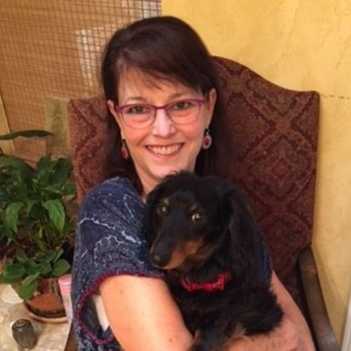 Experienced, excellent pet caregiver - first aid and cpr certified