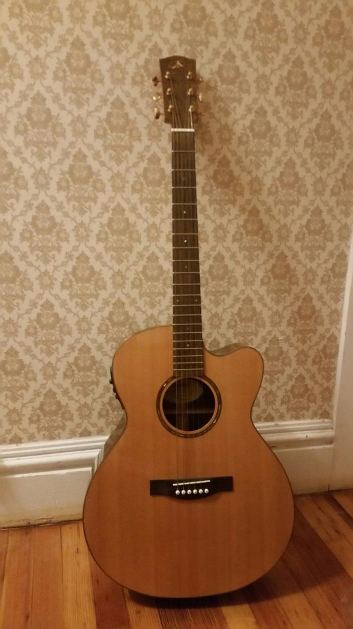 Bedel acoustic/electric Guitar