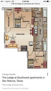 Roommate needed in clean Two BR! Available now! (The Lodge at Southwest)