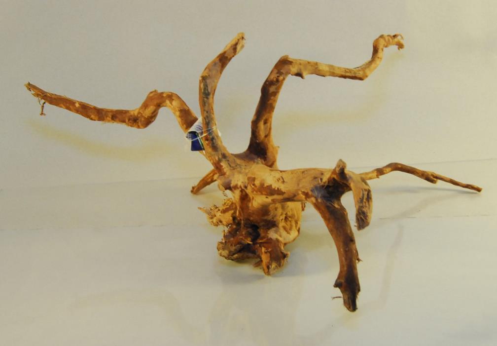 NATURAL SPIDER WOOD DRIFTWOOD #11 17