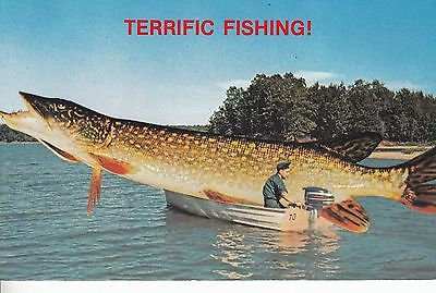 TERRIFIC FISHING HERE AN OVERSIZED FISH IN A SMALL MOTOR BOAT
