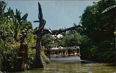 Jungle River Cruise-Adventureland Walt Disney Productions Chrome Postcard