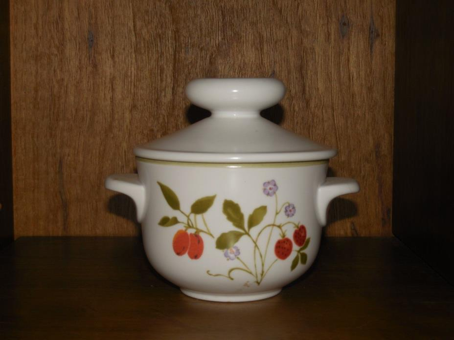 Beautiful Noritake Progression Berries N Such Individual Casserole Dish 9070