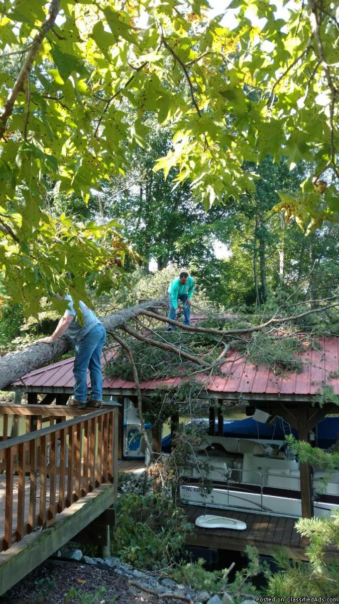 Advance tree service