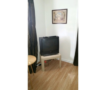 Clean, Quiet, Fully Furnished, and 2 Buses within walking distance