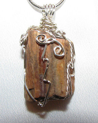raw Petrified wood wire wrap real stone pendant sp snake chain necklace #E103