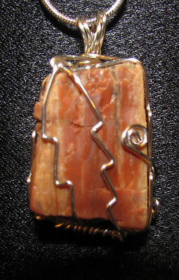 raw Petrified wood wire wrap real stone pendant sp snake chain necklace #E100