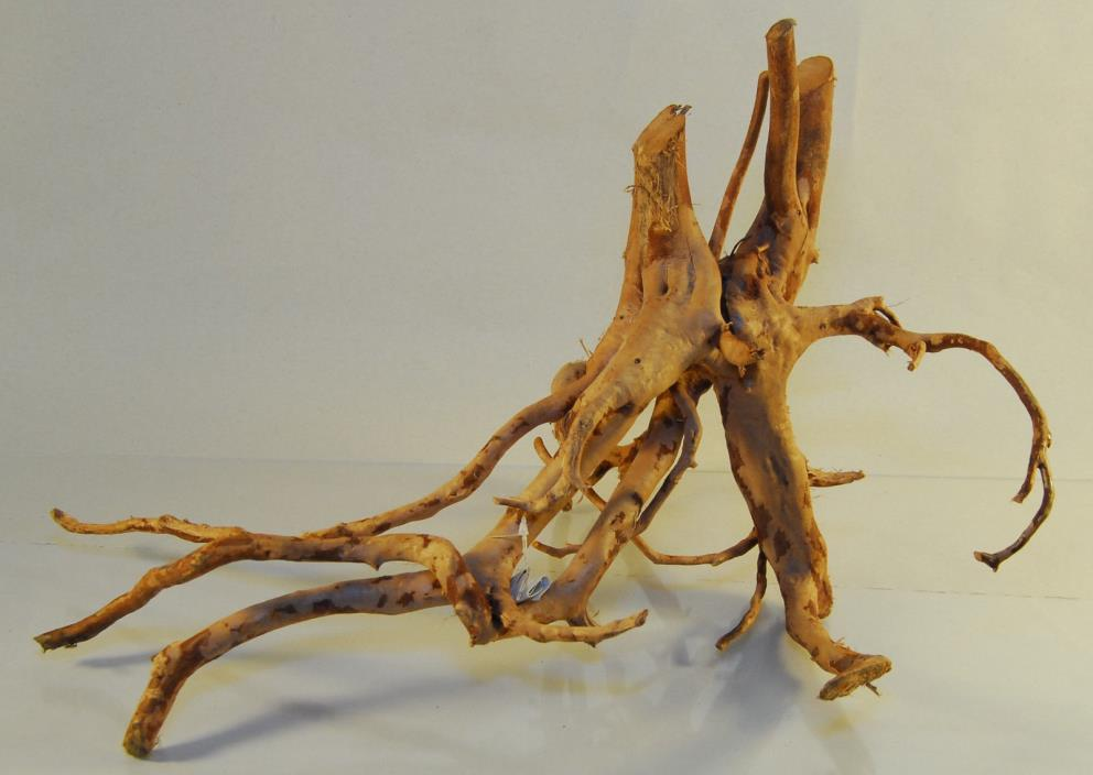 NATURAL SPIDER WOOD DRIFTWOOD #105 16