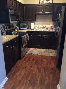 Room for Rent in Two BR Two BA in Fort Worth $1200 1100ft 2