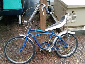 Sears Robuck Spyder Mark VII Banana Seat Bicycle (Auburn)