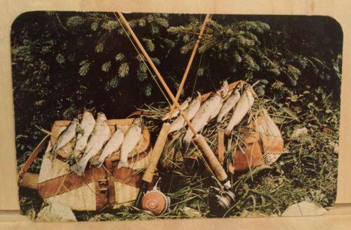 Postcard TWO CREELS rod reel FLY FISHING fish mountain TROUT Photo Martin Buffo