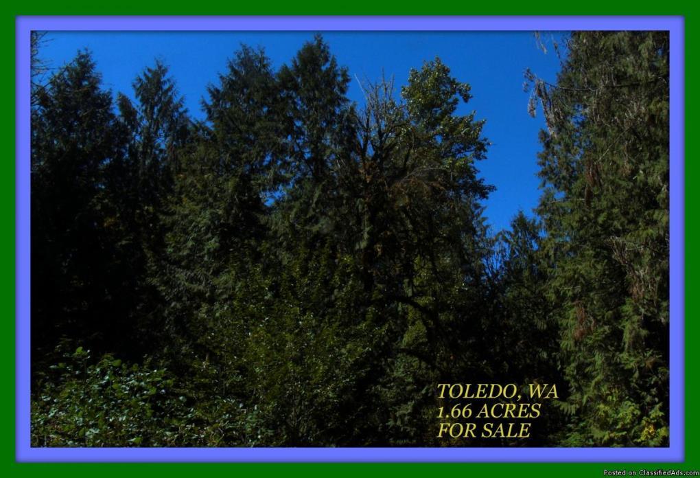 1.66 ACRES VANCANT LAND IN TOLEDO, WA