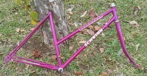Schwinn Lugged Chromemoly Road Bike F/F