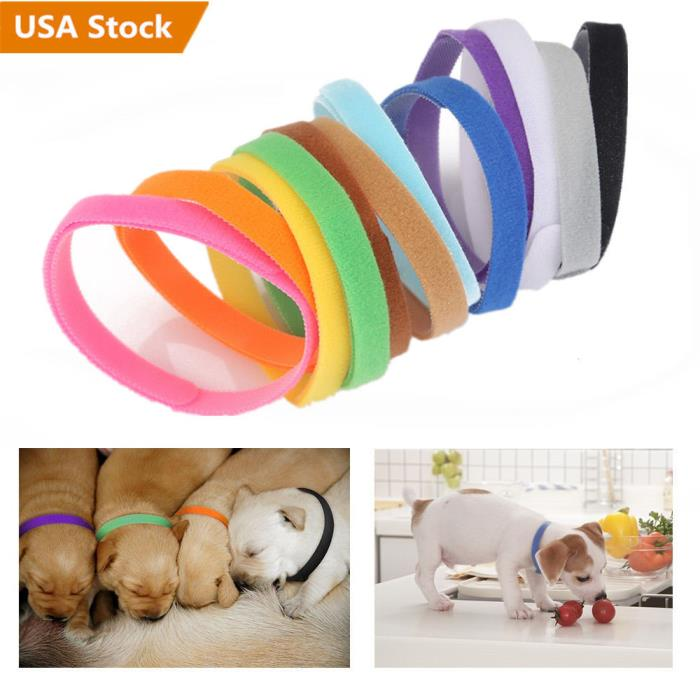 12x Dog Whelping Kitten ID Collar Bands for Doggy Puppy Breeders Cat Washable US